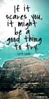 If it scares you, it might be a good thing to try. Seth Godin